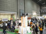 2012_0296 green
